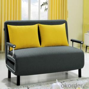 Sofa Sleeper with Two Seats Folding Bed