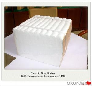 Ceramic Fiber Module Refractory or Insulation Heat Lining Industrial Furnace