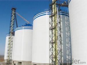 Raw Grain Silo Long Term Storage High Strength Steel Silos