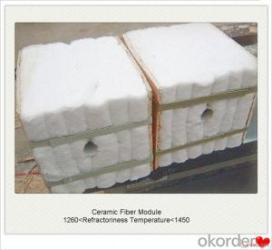 Ceramic Fiber Module Supplier and Ceramic Fiber Blanket, Cloth, Textiles
