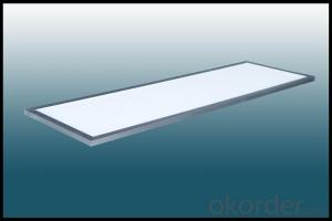 LED Panel Light Ultra Thin  300*1200mm 3Years Warranty