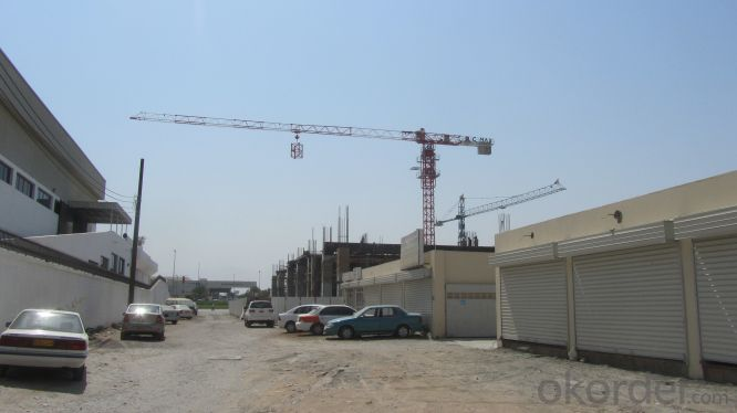 Tower Crane TC6024 Construction Equipment Sales Building Machinery Distributor