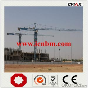 Tower Crane Lifting Machines Famous Factory