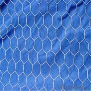 Hexagonal Wire Netting Galvanized /PVC Coated for Building Materials