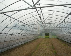 Multispan Plastic Film Greenhouse for Tomato Cucumber Flower Horticulture
