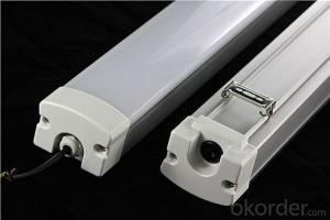 Tri-proof Tube Light IP 65 China Manufacturer