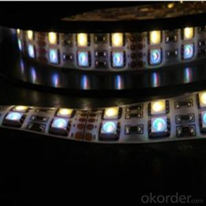 LED Strip Series with SMD 5050   DC24V and Double Row Monochromatic
