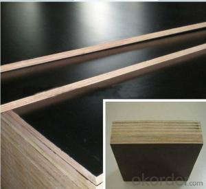 WBP Melamine Glue Poplar Core Film Faced Plywood with 19mm Thickness