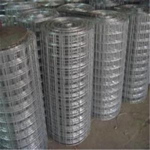 Galvanized Wire Mesh/Hot Dipped Galvanized, Electro Galvanized with Good Quality