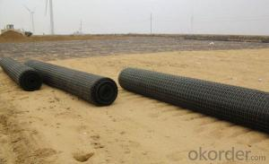Biaxial Geogrid Biaxial plastix protect-support net