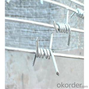 Galvanized Barbed Wire with High Quality Factory Direct Lower Price