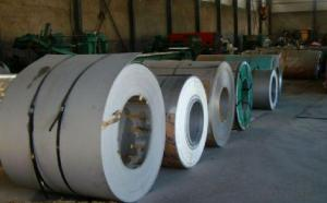 Galvanized Steel Coil  Hot Dipped DC51D  CNBM