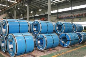 Hot-Dip Galvanized Steel/Pre-Painted Steel Coil for Tiles
