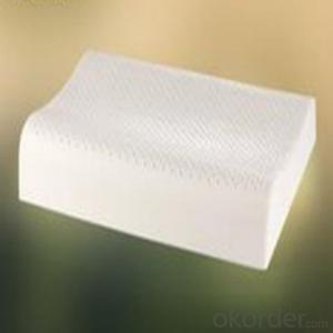 Latex Foam Pillow All Kinds of Size Home Furniture