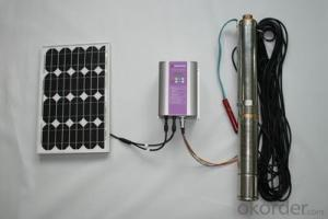 DC/AC Solar Water Pump System for Irrigation