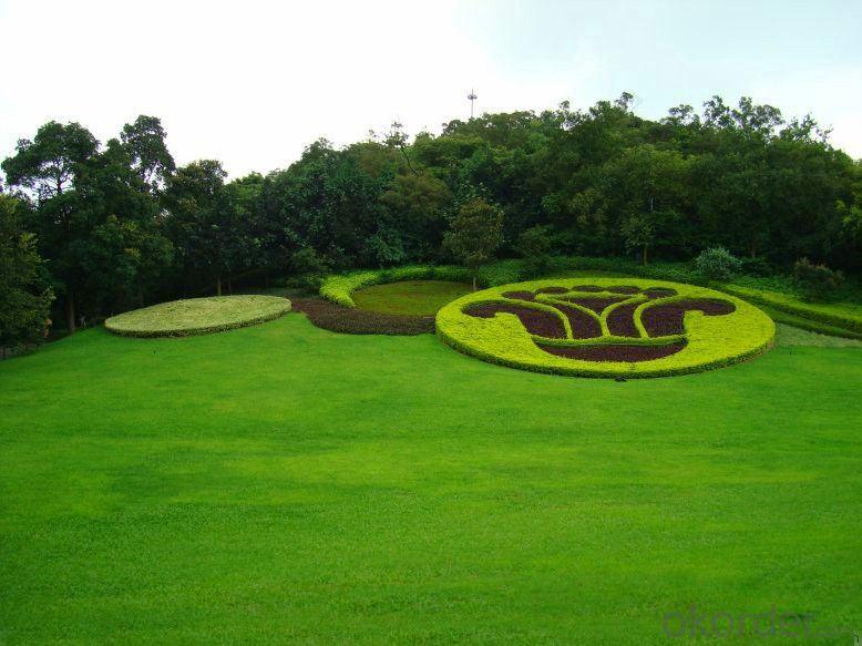 Synthetic Landscape Grass, Artificial Landscape turf with Rubber Backing