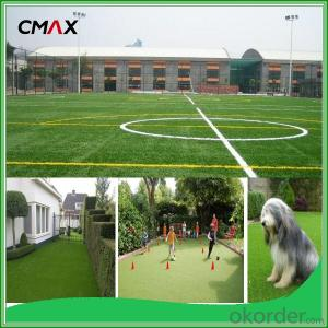 Pet Friendly Artificial Grass for Play Area