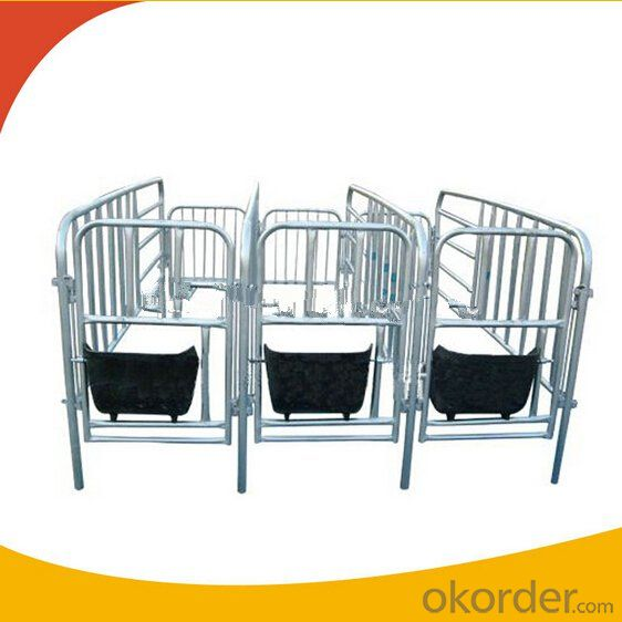 Galvanized Gestation Crate or Stall for Piglets(3 Booths)