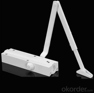 Door Closer with Hydraulic Aluminium Automatic on Dorma Type DC702