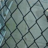 Chain Link Wire Mesh Galvanized PVC Coated China Real Factory