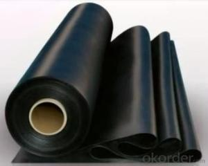 Geomembrane with China Top Quality Direct Factory