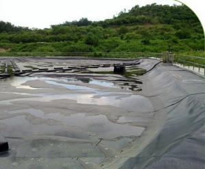 HDPE  Geomembrane Black Plastic Sheeting