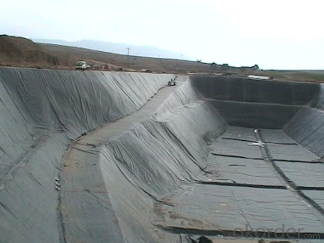 HDPE Geomembrane Black Plastic Sheeting for Pond