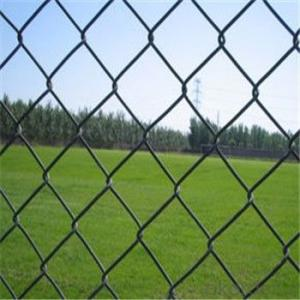Chain Link Wire Mesh Fence Wire Mesh High Quality Factory Direct