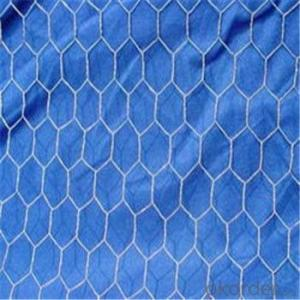 Hexagonal Wire  Mesh Chicken Netting Electro and Hot Dipped Galvanized PVC