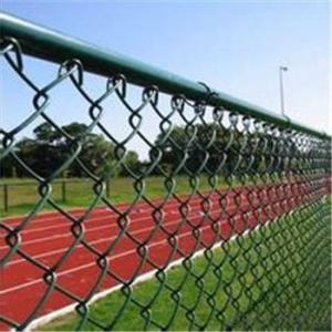 Chain Link Wire Mesh Electro and Hot Dipped Galvanized PVC Real Factory
