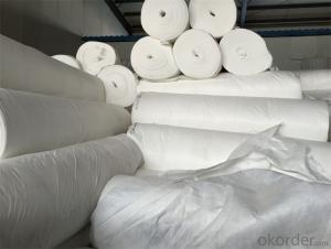 Spunbonded Non Woven Geotextiles with 1000g