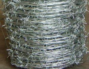 Barbed Wire/Galvanized Wire/PVC Coated Concertina Wire