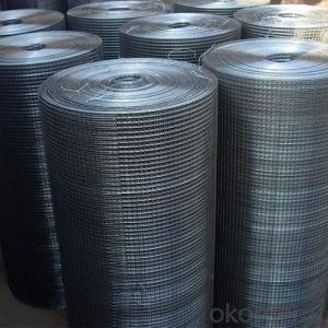 Stainless Steel Welded Wire Mesh with Good Price