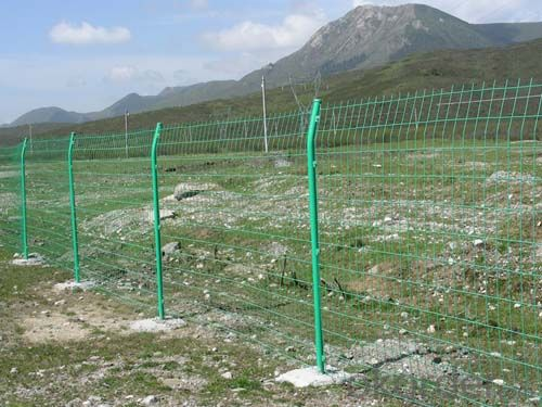 Buy Double Loop White Color Wire Mesh Fence Price Size