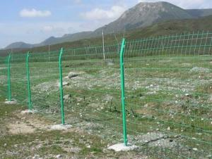 Double Loop White Color  Wire Mesh Fence