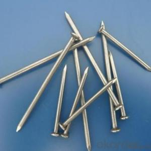 Steel Common Nail Manufacturer Steel Common Nail Factory Price