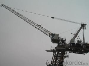 Tower Crane of TCD320 Luffing Crane with Max Load Capacity of 25 Ton
