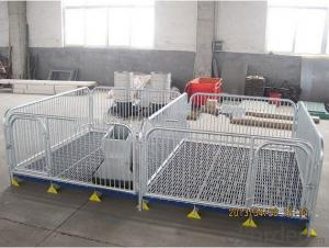 Galvanized Nursery Stall with Galvanized Tube&Plastic Floor for Piglets or Calves