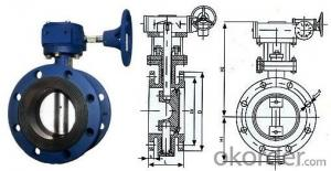Butterfly Valve Ductile Iron Cast Iron High Quality Can be Customised