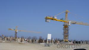 Guaranteed Meida Self Raising 6 Tons QTZ 5013 Tower Crane