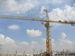 Tower Crane New Qtz80 YX6010 Double-Gyration