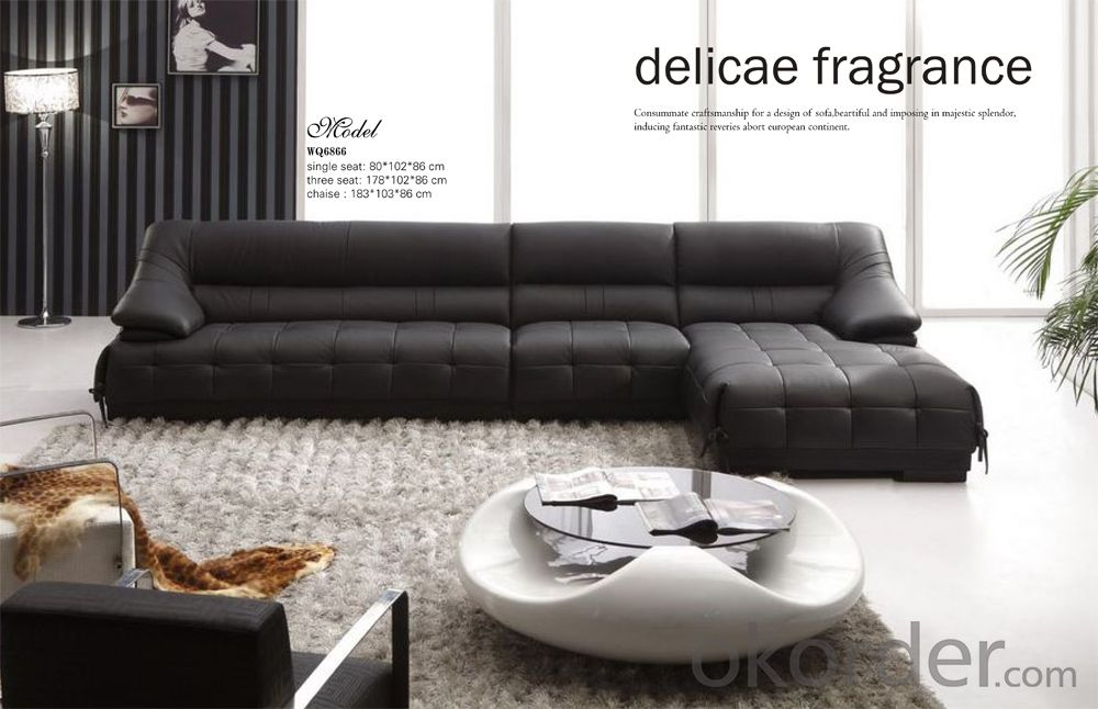 Leather Living Room Sofa of Environmental Material