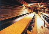 Oil Resistant Conveyor Belt CNBM CMAX