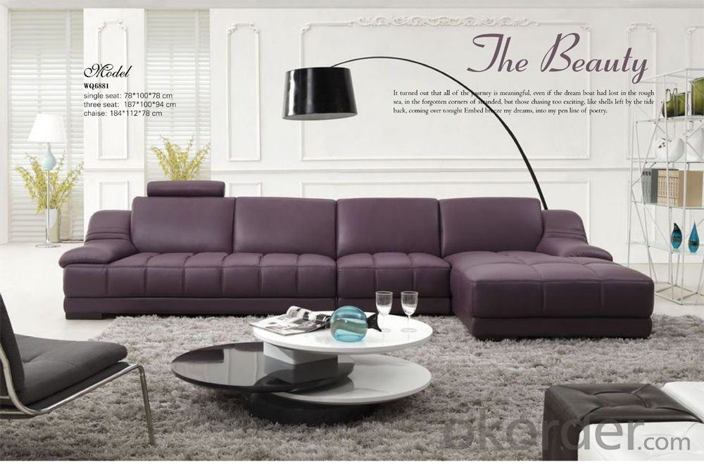 Living Room Sofa Furniture of Leisure Design