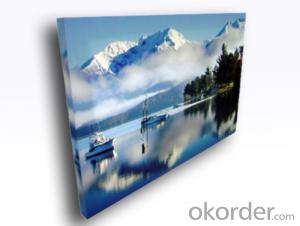 New European Standard Wholesale Stretched Canvas