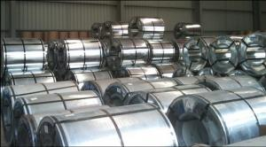 Galvanized Steel Sheet in Ciols with Prime Quality Lowest Price