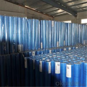 Alkali Resistant Coated Fiberglass Mesh Cloth 95g/M2 5*5MM 5*5/Inch Hot Selling Good Price