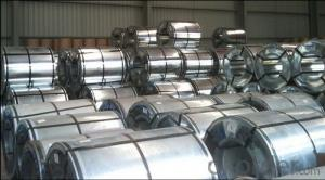 Galvanized Steel Sheet in Ciols with Best Prime Quality