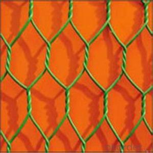 Hexagonal Wire Mesh Chicken Wire Netting Galvanized PVC High Quality