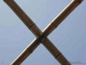 White Natural Bamboo Bamboo Poles Bamboo Sticks
